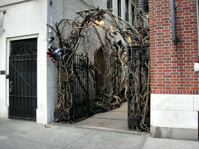 Gnarled branches line the entry walkway to Cynthia Rowley's Upper East side boutique and candy shop | York Avenue blog