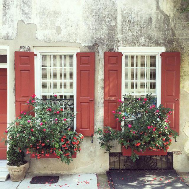 Pretty window boxes everywhere ExploreCharleston