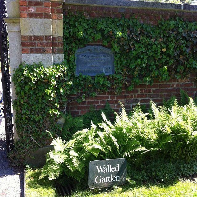 Old Westbury Gardens Rose Garden: Photo Essays: Westbury Gardens Part II