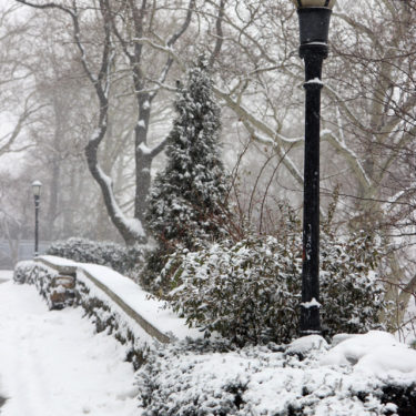 Photo Essays: Snow in Carl Schurz Park