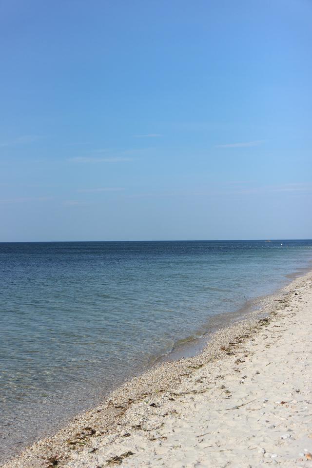 beach-7124