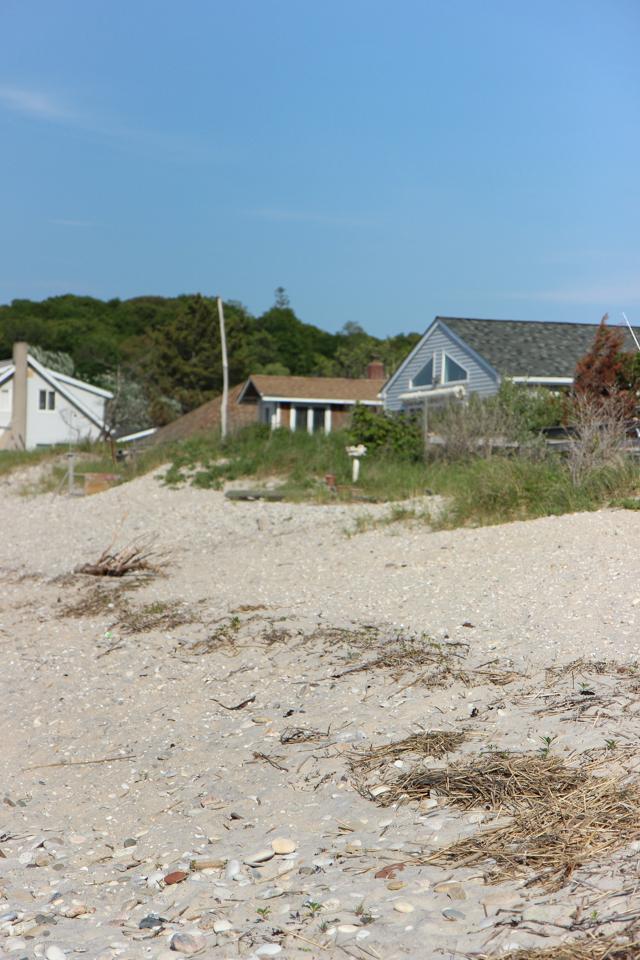 beach-7129