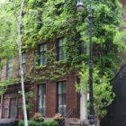 Photo Essays: West Village Wednesday