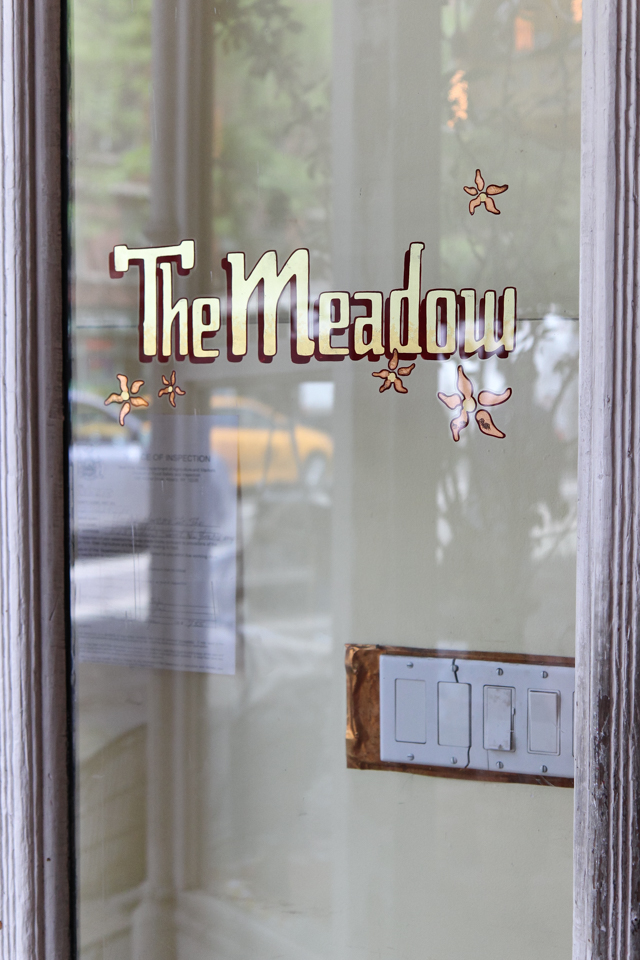 the meadow-6780