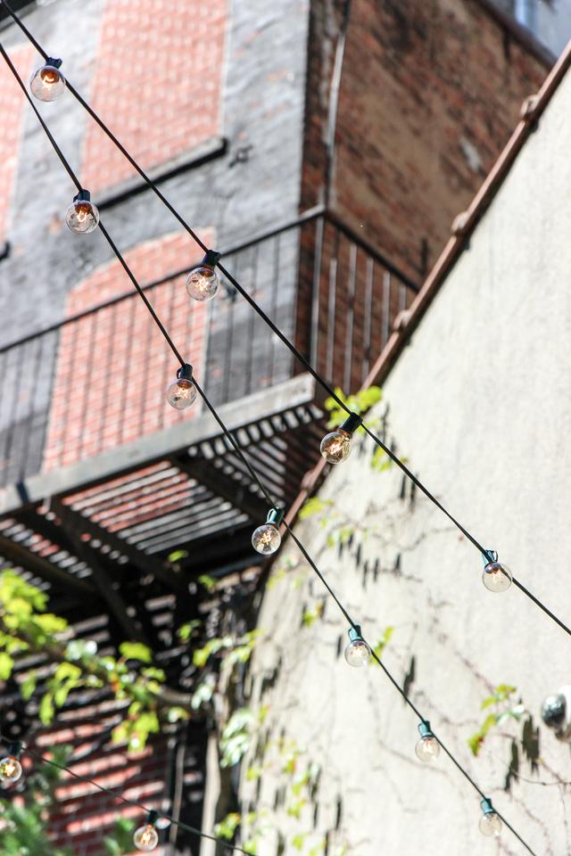 freemans alley -9034