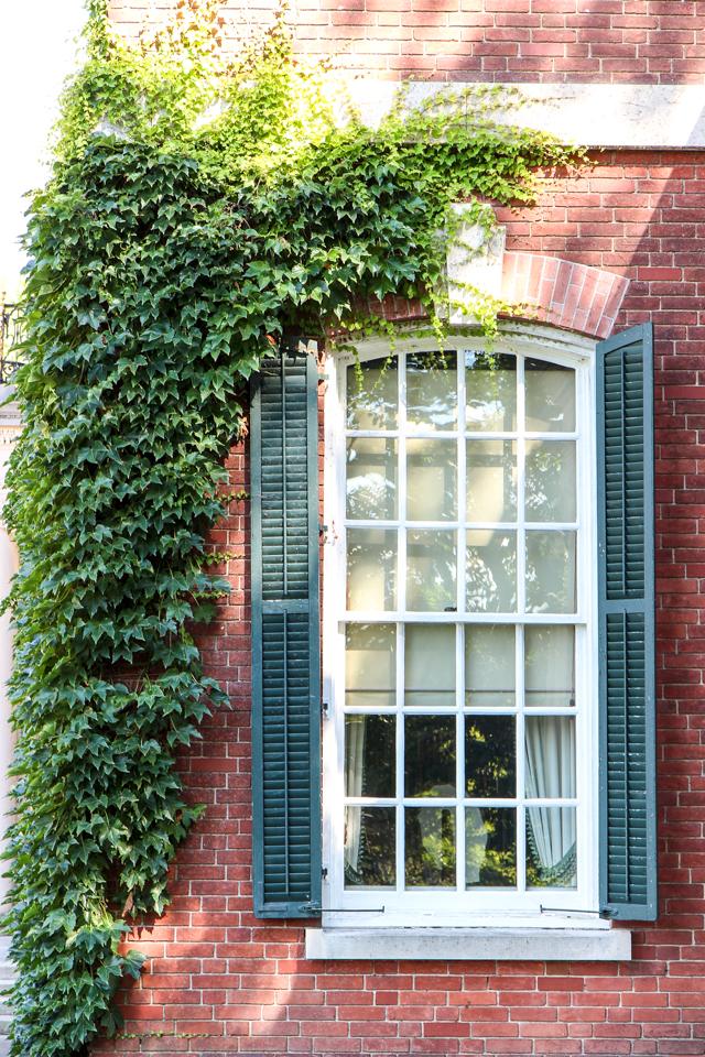 westbury gardens-8717