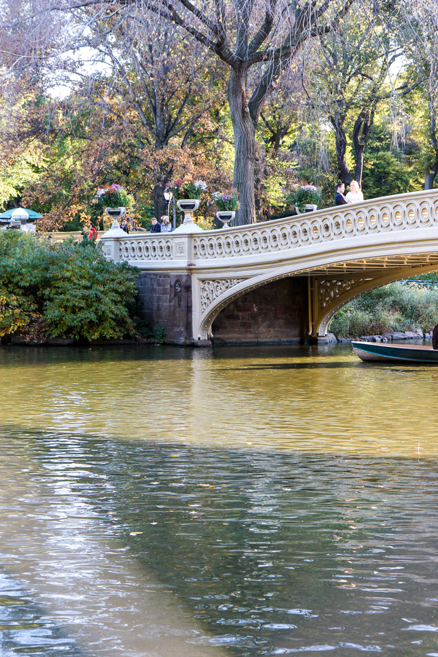 autumn in central park-9544