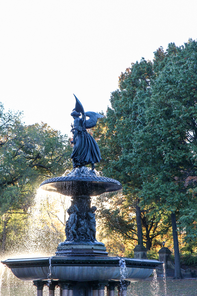 autumn in central park-9563