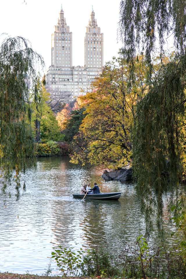 autumn in central park-9567