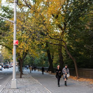 Photo Essays: Autumn in Central Park