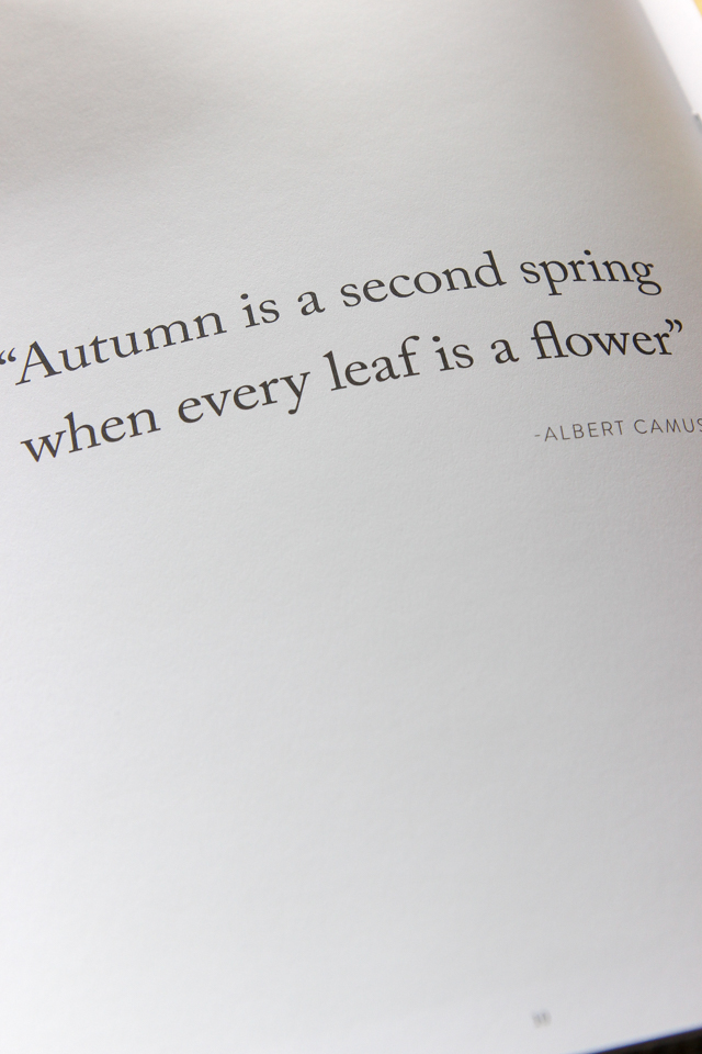 autumn in the hamptons-9148