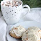Vanilla Bean Eggnog Cookies