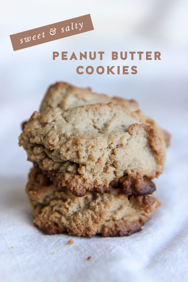 peanut-butter-cookies-9819