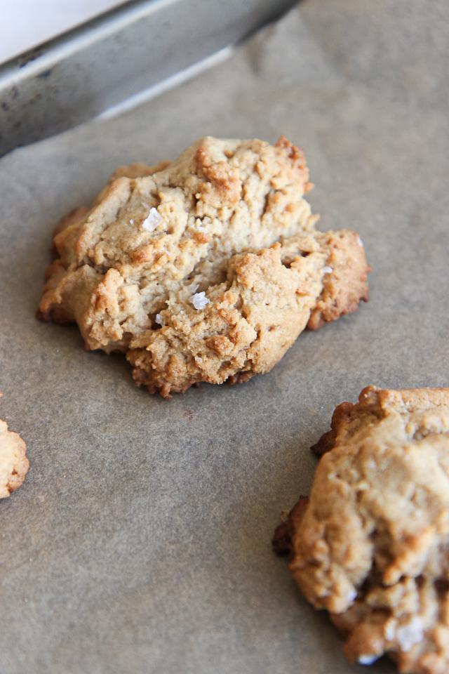peanut butter cookies-9827