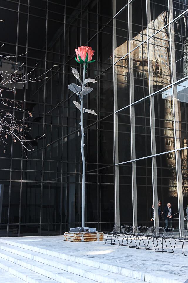 museum of modern art-1197