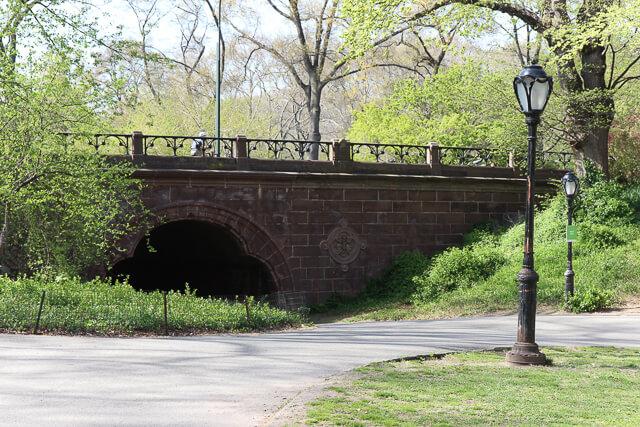 spring in central park-2354