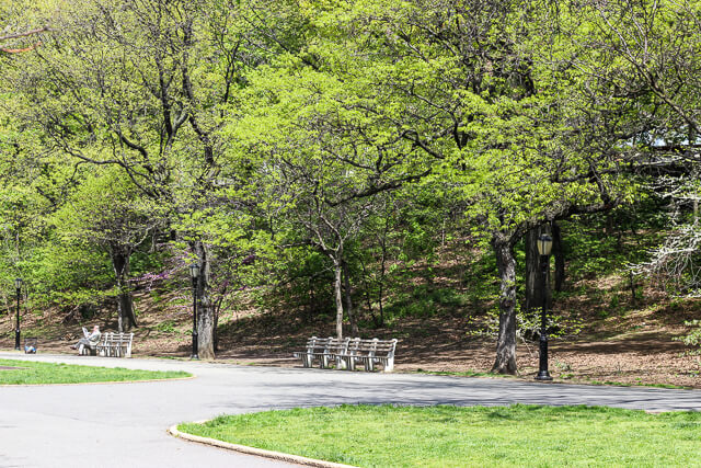 riverside park-2958