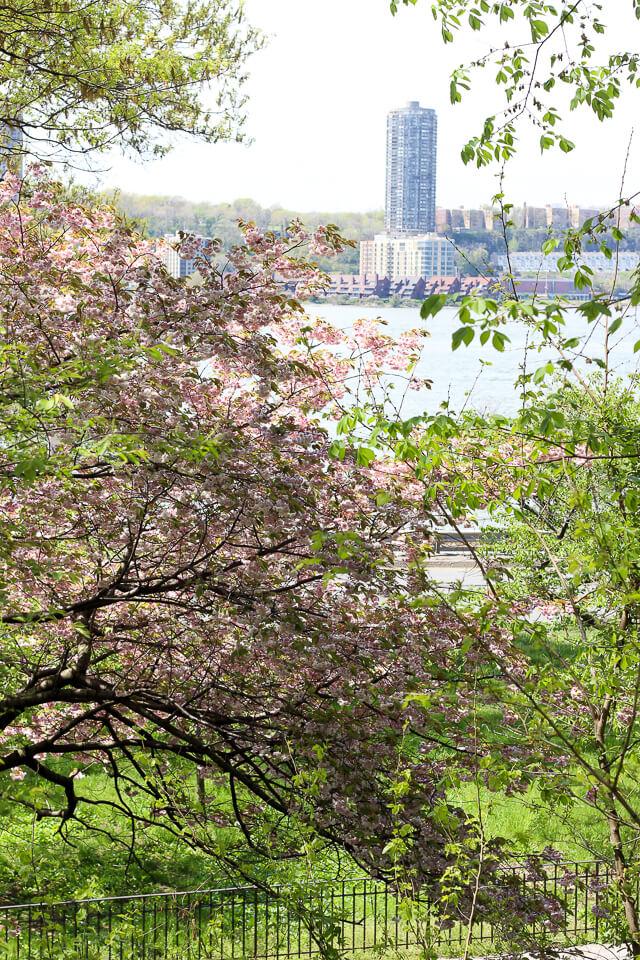 riverside park-2960
