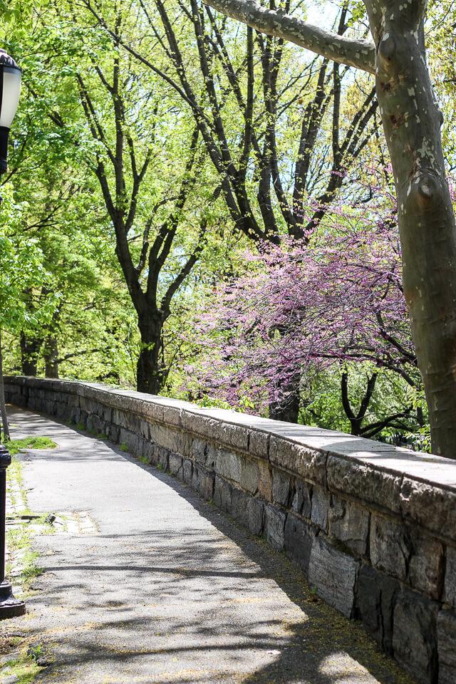riverside park-2993