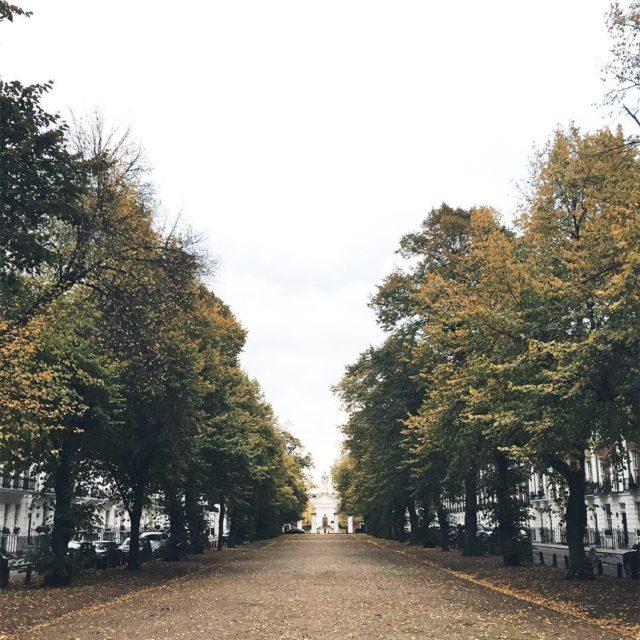 Fall in London london fallinlondon