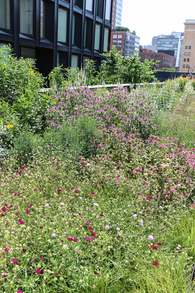 the high line-4075