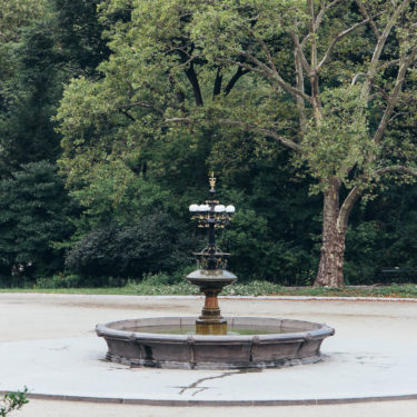 Photo Essays: Early Morning in Central Park