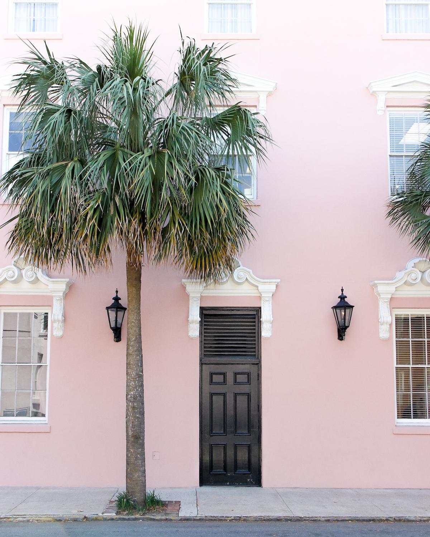 charleston-pink-2646