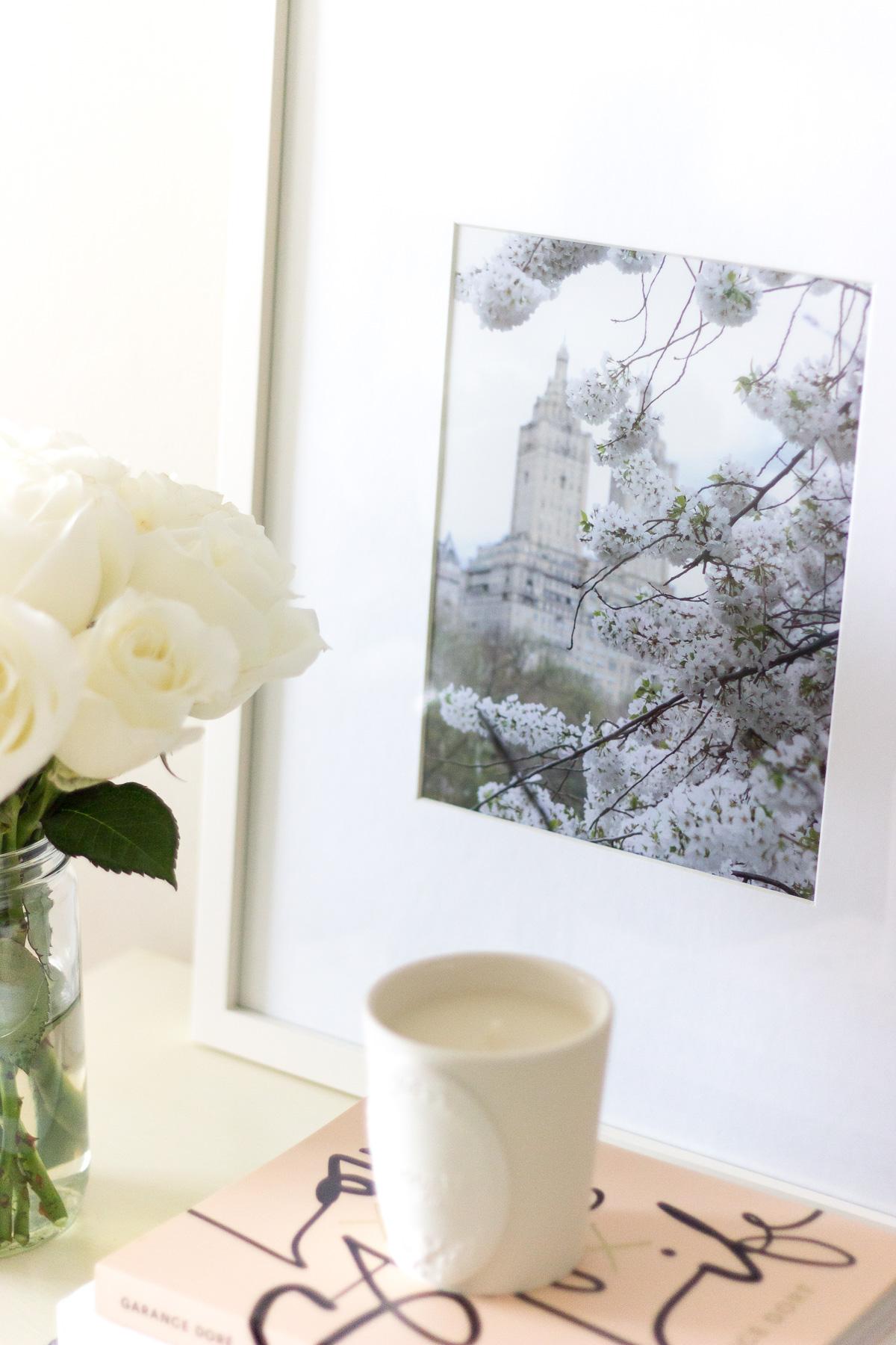 white-flowers-5048