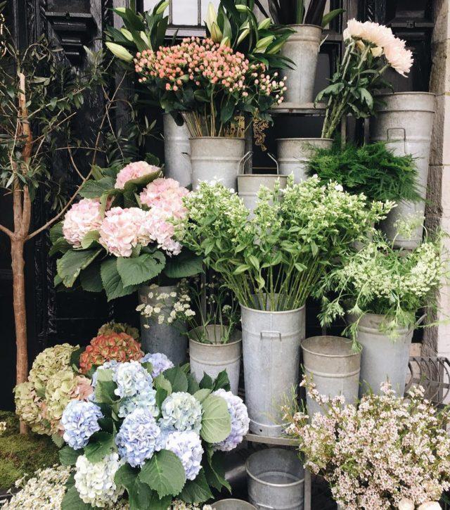 Prettiest flowers at libertylondon on Regent Street london libertyoflondon