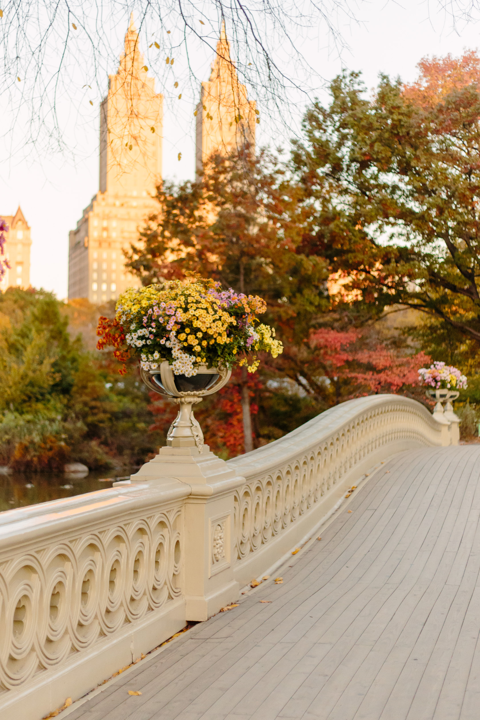 bow-bridge-fall-5971