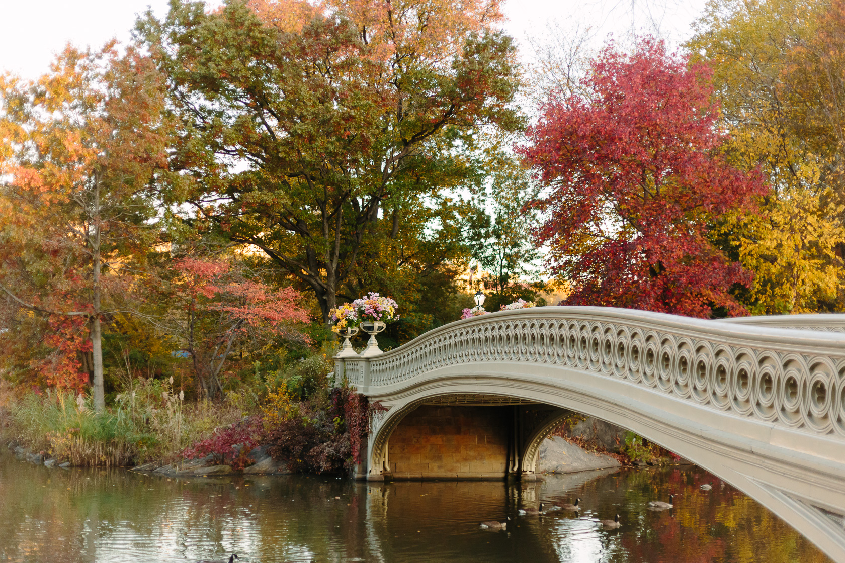 bow-bridge-fall-6000