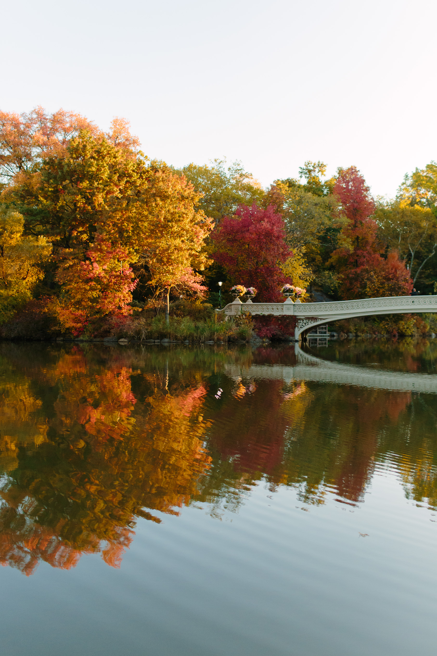 bow-bridge-fall-6026