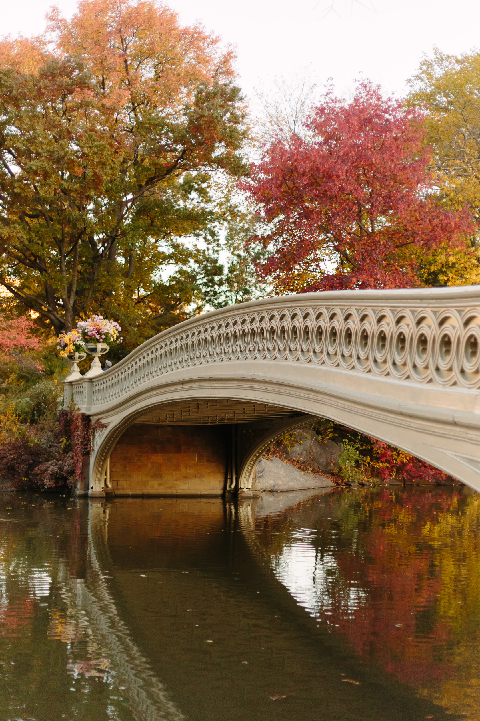 bow-bridge-in-fall-6013