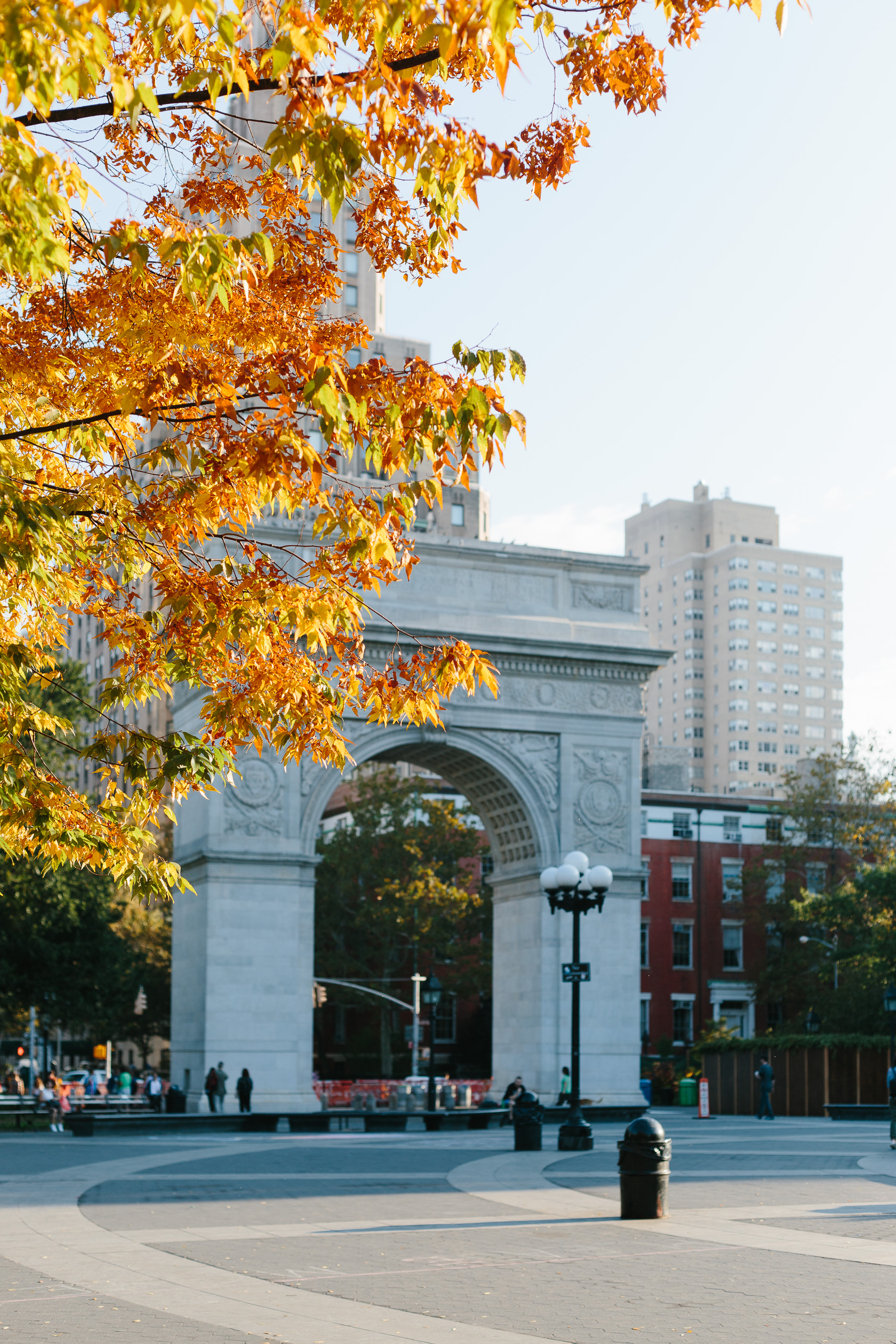 fall-in-washington-square-park-3597