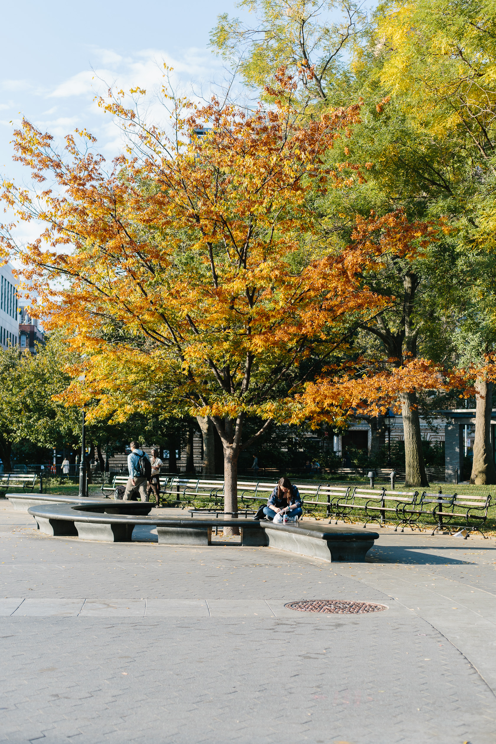 fall-in-washington-square-park-3610