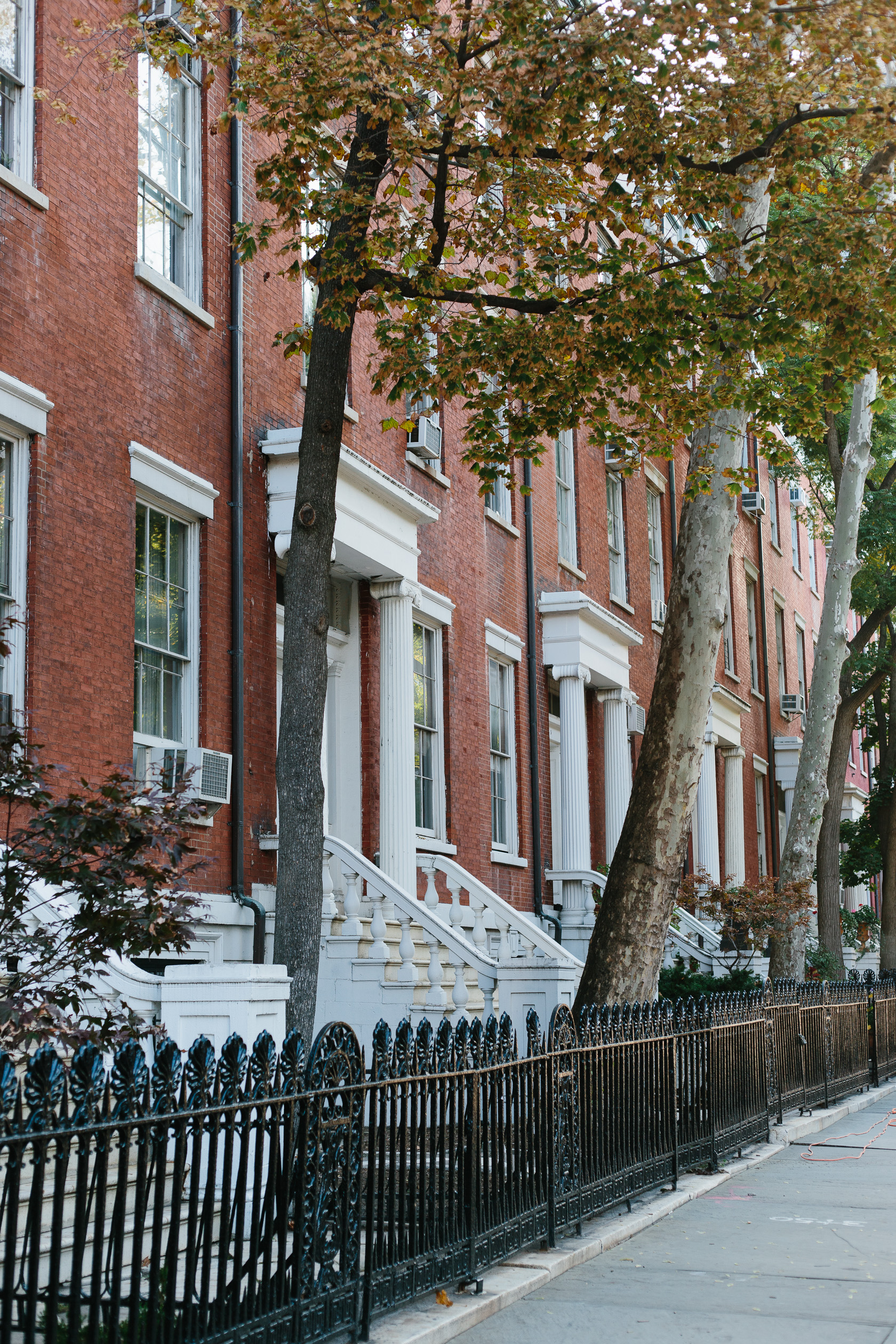 washington square essay Learn the major plot points and story structure of washington square by henry james.