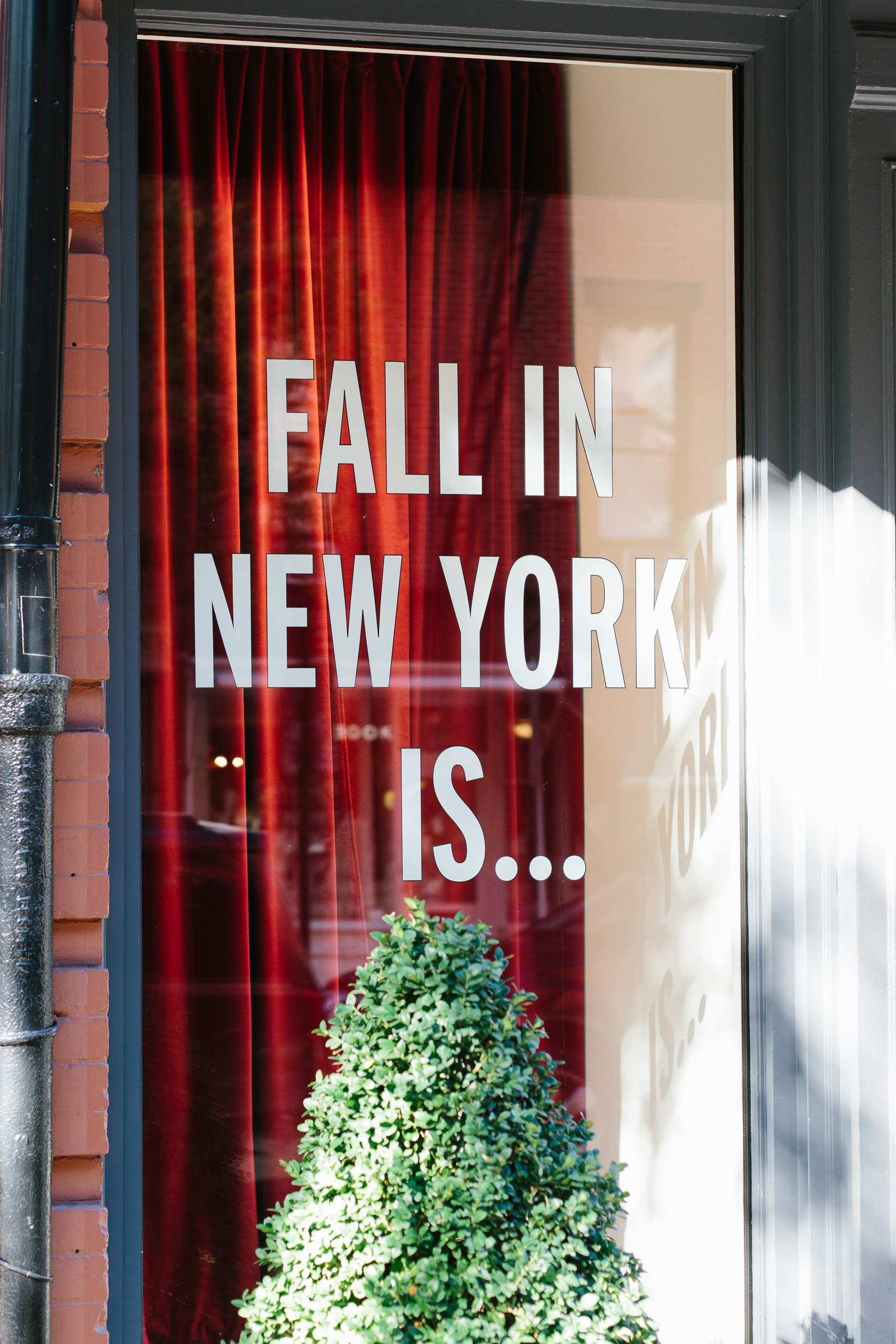 west-village-fall-3122