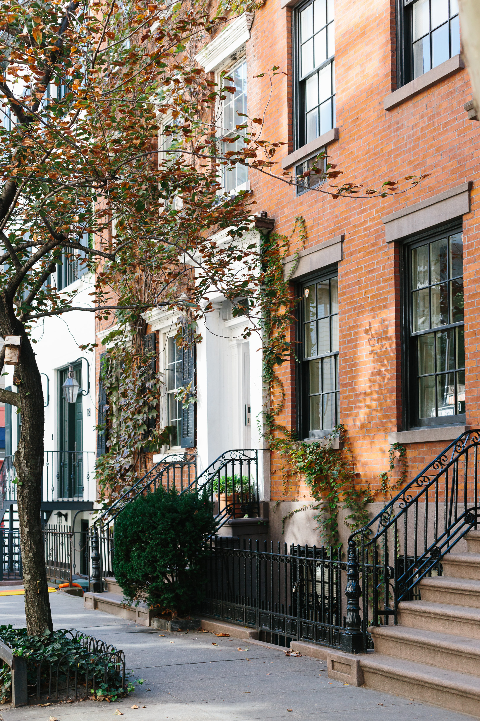west-village-fall-3161