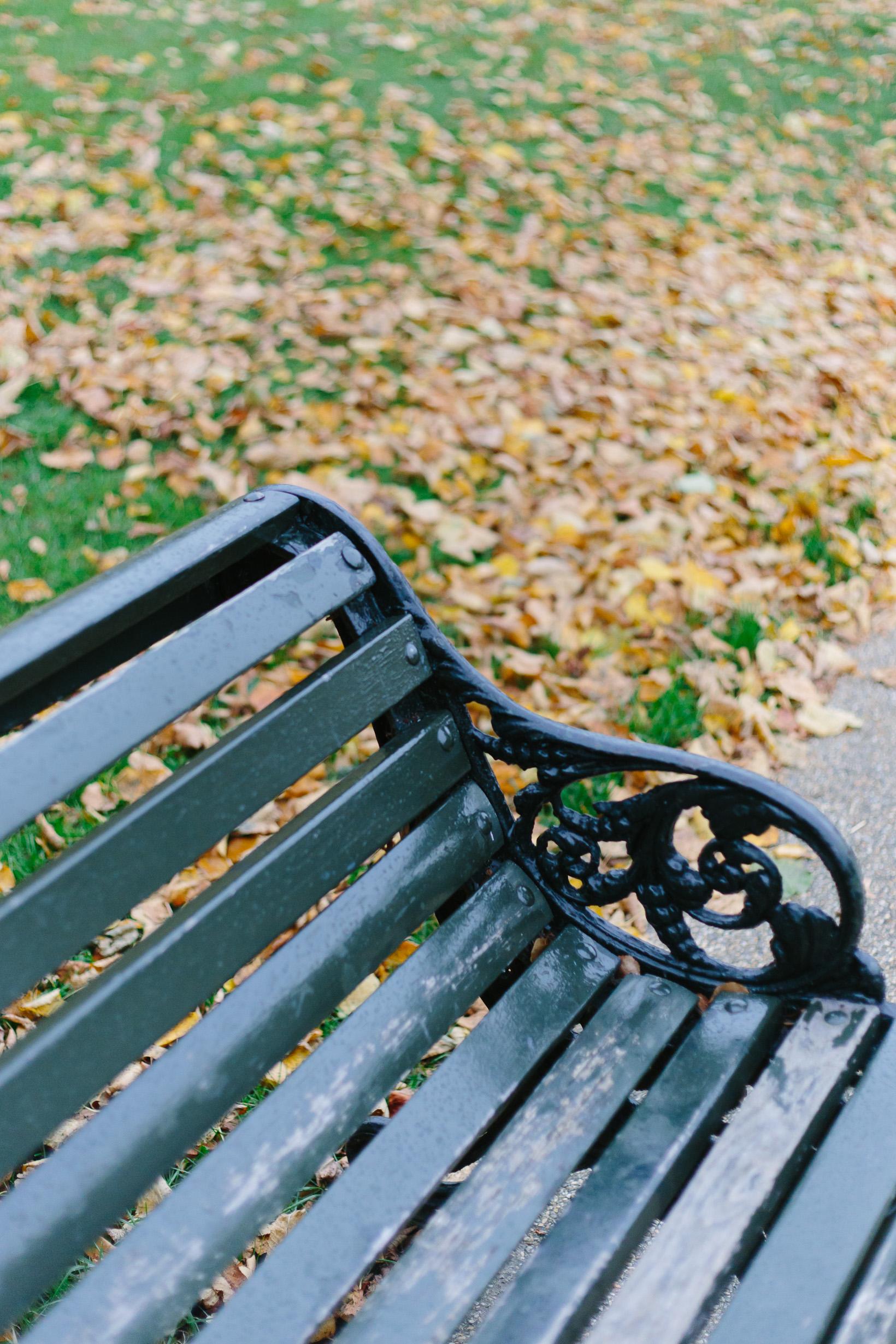 fall-in-hyde-park-london-4116