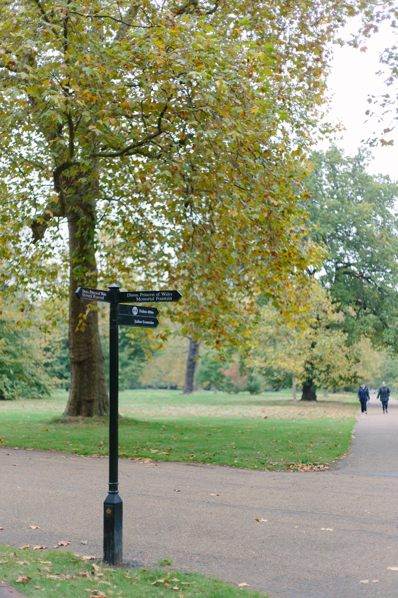 fall-in-hyde-park-london-4131
