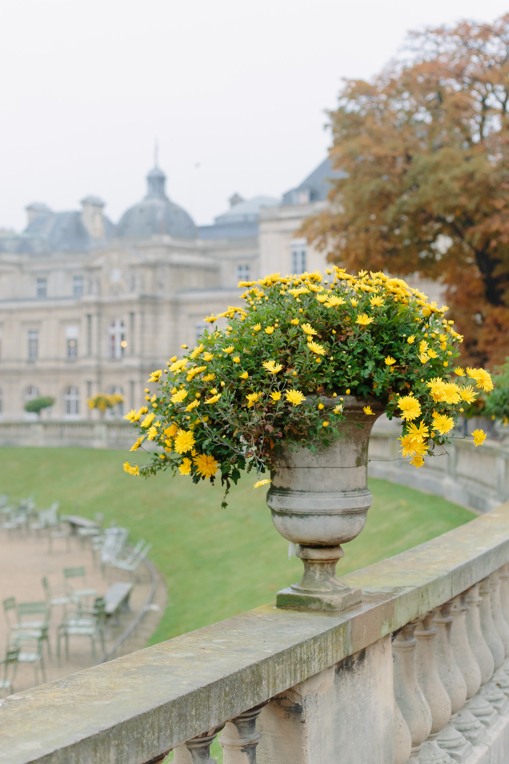 Paris Photo Essays  Jardin du Luxembourg   York Avenue