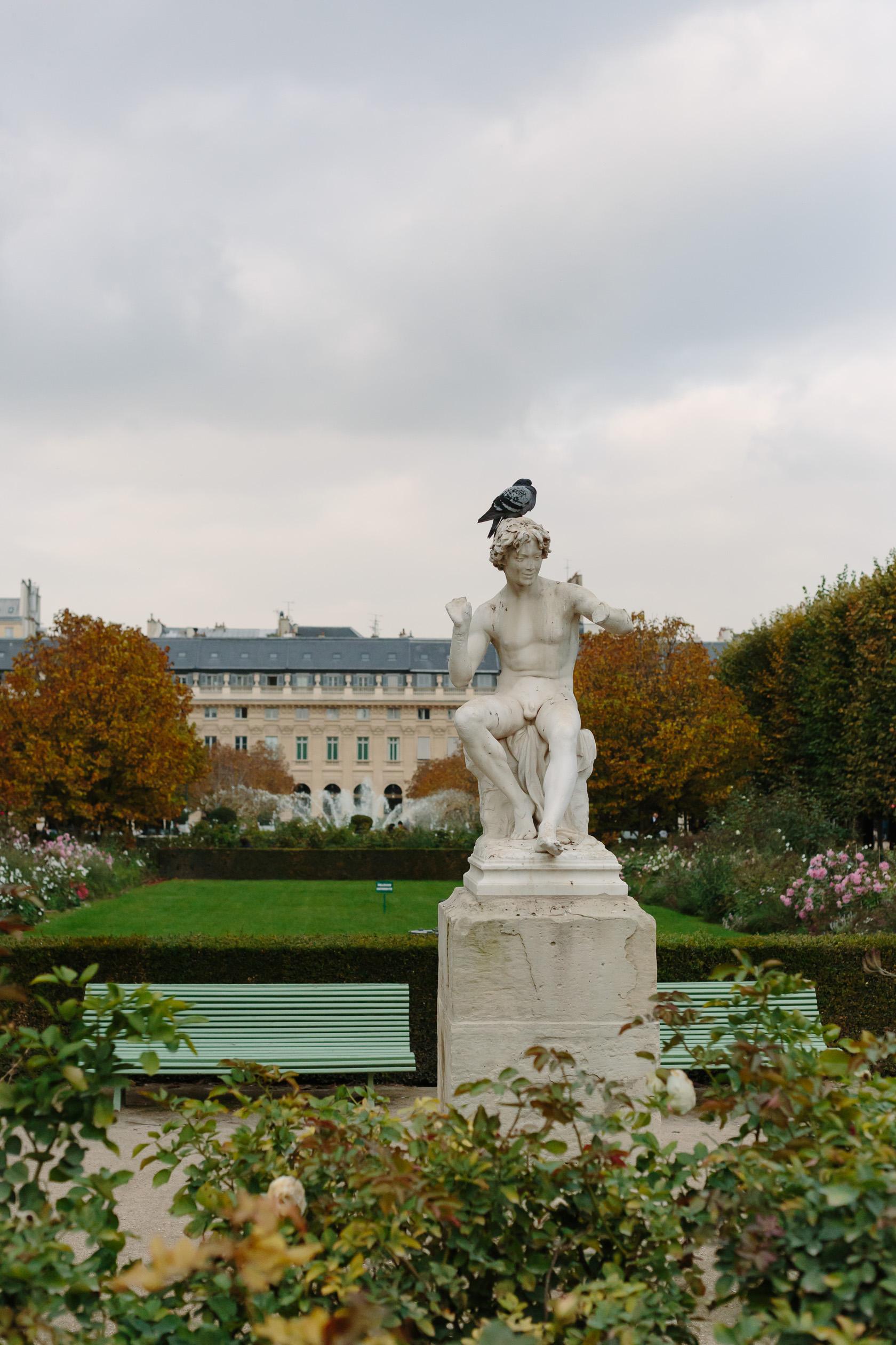 palais-royal-5188