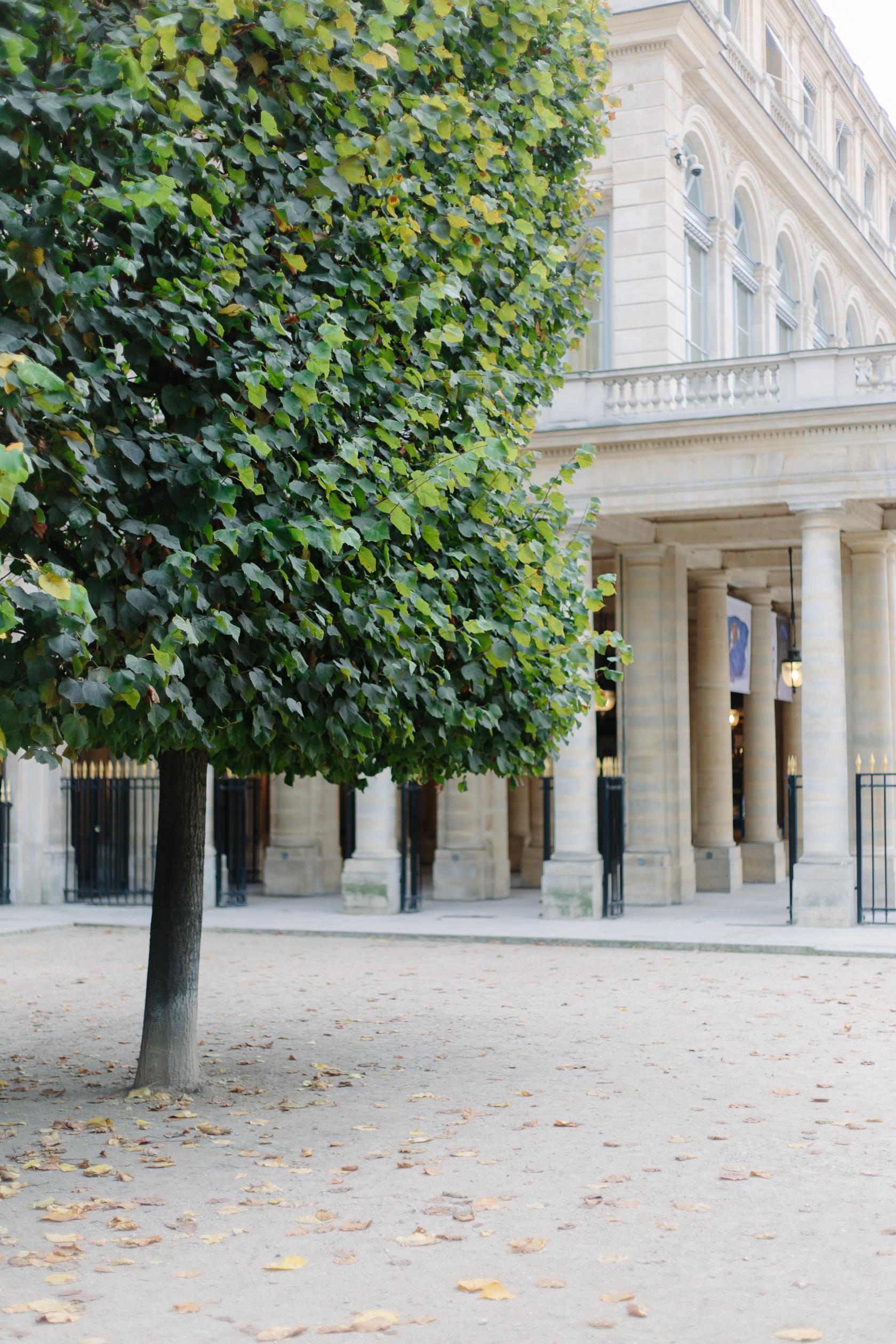 palais-royal-5259