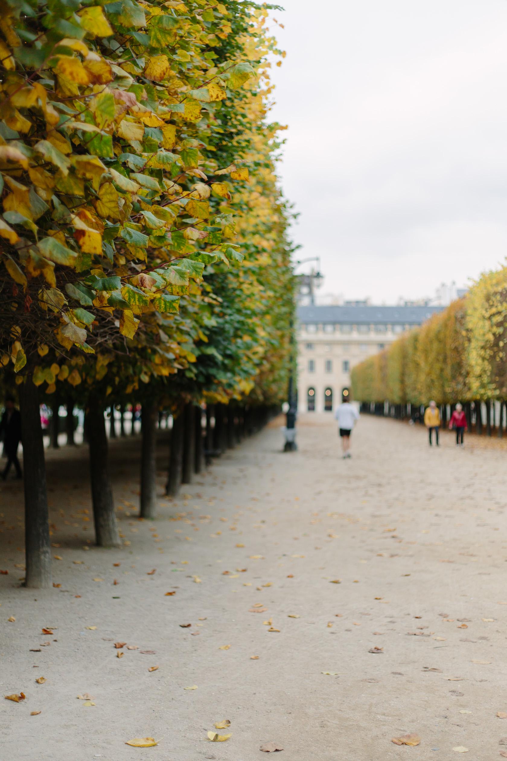 palais-royal-5260