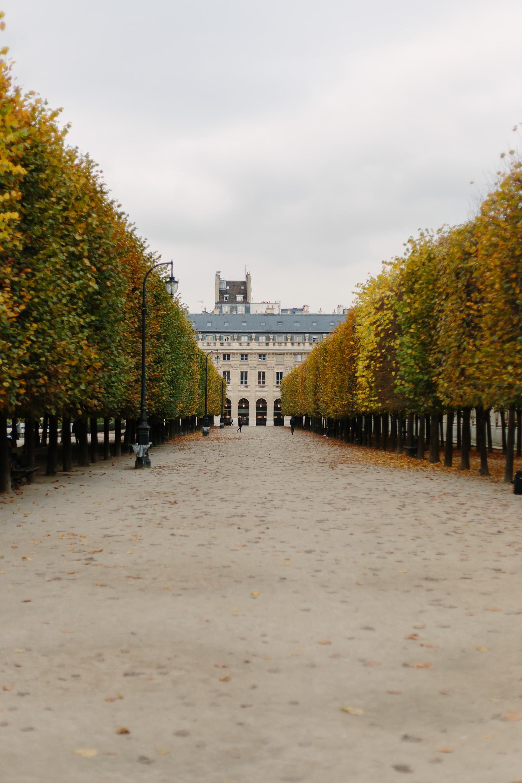 palais-royal-5271