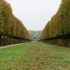 Paris Photo Essays: Versailles (Part Deux)