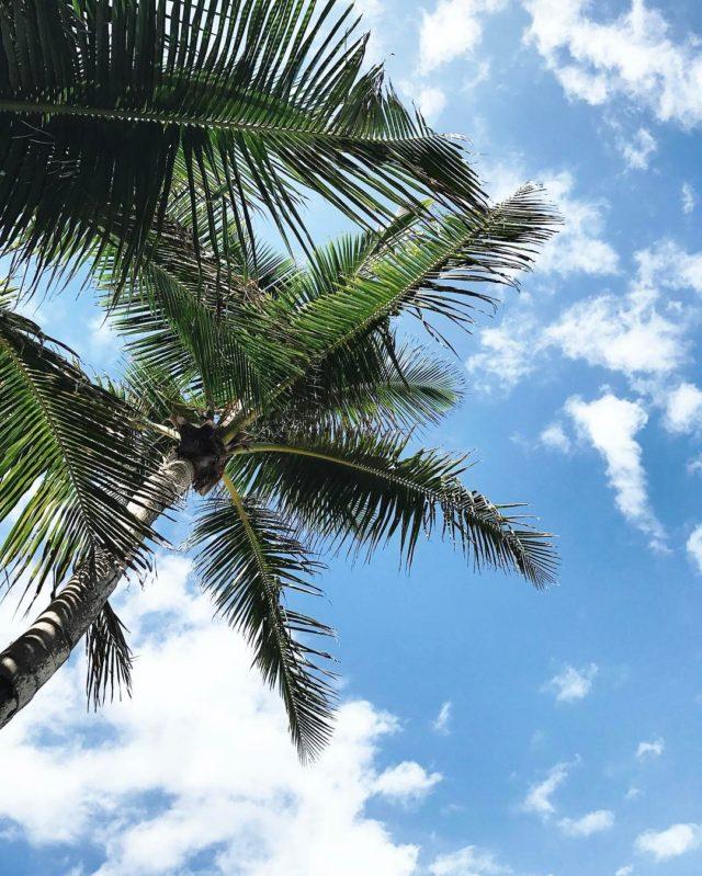 Ahhhhh belaconcha puertorico vacationmode