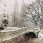 Photo Essays: Snowfall in Central Park