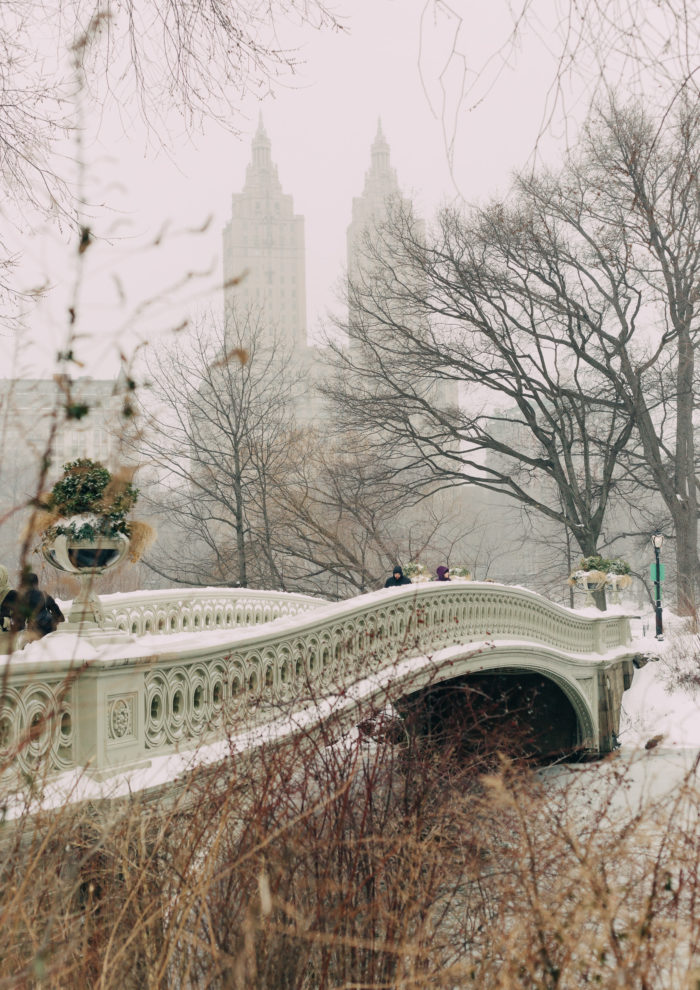 Photo Essays: Snowfall in Central Park