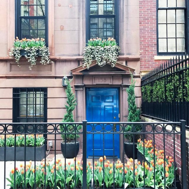 Blue and orange uppereastside spring
